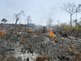 A Burnt Hill Side after Deforestation from Pathein to Mawdin Sun  Irrawaddy Delta  Myanmar (Burma)