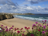 Great Western Beach  Newquay  Cornwall  England