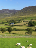 Luke's Mountain  Mourne Mountains  County Down  Ulster  Northern Ireland  United Kingdom  Europe