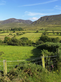 Slievenaglogh  Mourne Mountains  County Down  Ulster  Northern Ireland  United Kingdom  Europe