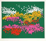 Untitled - Floral Park