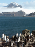 Aitcho Island  Antarctica  Polar Regions