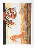 Tiger Composition