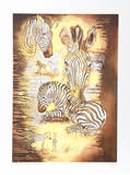 Zebra Motherhood Study