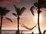 Woman in a Hammock on the Beach  Florida  United States of America  North America