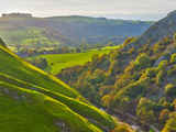 Dovedale  Peak District National Park  Derbyshire  England