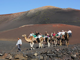 Dromedary Ride on Timanfaya Mountain  Timanfaya Nat'l Park  Lanzarote  Canary Islands  Spain