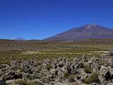 Southwest Highlands  Bolivia  South America