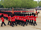 Soldiers at Trooping Colour 2012  Queen's Official Birthday Parade  Horse Guards  London  England