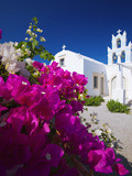 Greek Church and Flowers  Santorini  Cyclades  Greek Islands  Greece  Europe