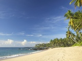 View of the Unspoilt Beach at Palm Paradise Cabanas  Tangalle  South Coast  Sri Lanka  Asia