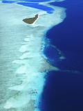 Aerial View  Maldives  Indian Ocean  Asia
