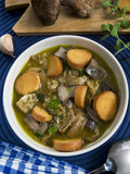 Mushroom Soup (Boletus Edulis)  Italy  Europe