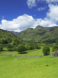 Langdale Pikes  Lake District National Park  Cumbria  England  United Kingdom  Europe