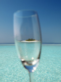 Glass and Tropical Island  Maldives  Indian Ocean  Asia