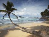 Dalawela Beach  Southern Province  Sri Lanka  Asia