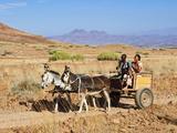 Damara Family  Damaraland  Kunene Region  Namibia  Africa