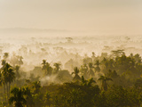 Early Morning Mist on the Kedu Plain at Sunrise from the Borobudur Temple  Java  Indonesia