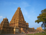 Bridhadishwara Temple  UNESCO World Heritage Site  Thanjavur (Tanjore)  Tamil Nadu  India  Asia
