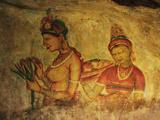 Frescoes  Sigiriya (Lion Rock)  UNESCO World Heritage Site  Sri Lanka  Asia