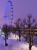 Houses of Parliament and London Eye in Winter  London  England  United Kingdom  Europe