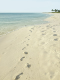 Footprints in Sand at Grace Bay Beach, Providenciales, Turks and Caicos Islands, West Indies Papier Photo par Kim Walker