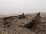 Shipwreck  Skeleton Coast National Park  Namibia  Africa