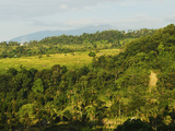 Rainforest and Fields  Senaru  Lombok  Indonesia  Southeast Asia  Asia