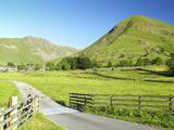 Hartsopp Dodd  Near Patterdale  Lake District National Park  Cumbria  England  UK  Europe