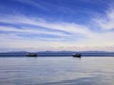 Two Boats on the Lake  Kollabaya  Challapampa  Isla del Sol  Lake Titicaca  Bolivia  South America