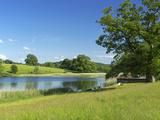 Esthwaite Water  Lake District National Park  Cumbria  England  United Kingdom  Europe