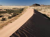 Sand Dune  Huab River Valley  Torra Conservancy  Damaraland  Namibia  Africa