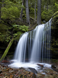 Fern Falls  Coeur D&#39;Alene National Forest  Idaho Panhandle National Forests  Idaho  USA