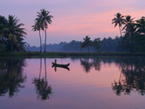 Dawn over the Backwaters  Near Alappuzha (Alleppey)  Kerala  India  Asia
