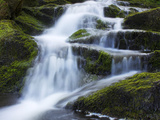 Waterfall  Glen Artney  Near Crieff  Perthshire  Scotland  United Kingdom  Europe