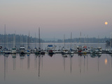 Boats Reflect on Puget Sound Waters of Quartermaster  Burton Marina  Vashon Island  Washington  USA
