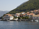 Houses on the Edge of the Bay of Kotor  Montenegro  Europe