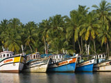 Fishing Boats Along the Backwaters  Near Alappuzha (Alleppey)  Kerala  India  Asia