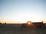 The Sun Beams Through Window of Old Farm Truck at Sunrise  Shaniko  California  USA  North America