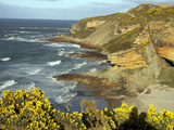 Cliffs Near Findhorn on the Morayfirth  Scotland  United Kingdom  Europe