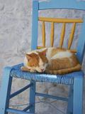 Chora  Amorgos  Cyclades  Aegean  Greek Islands  Greece  Europe