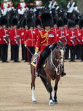 Soldiers at Trooping Colour 2012  Queen's Birthday Parade  Horse Guards  Whitehall  London  England