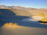 Mesquite Flat Sand Dunes  Death Valley National Park  California  USA  North America