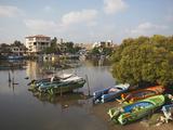 Boats in Negombo Lagoon  Negombo  Western Province  Sri Lanka  Asia