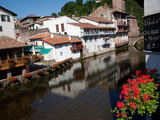 River and Flowers  St Jean Pied de Port  France  Europe