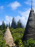 Tjibaou Cultural Center in Noumea  New Caledonia  Melanesia  South Pacific  Pacific