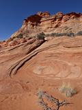 Sandstone and Red Sand  Vermillion Cliffs National Monument  Arizona  USA  North America