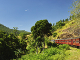 View from Train  Central Highlands  Sri Lanka  Asia