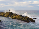 Fisherman Getting Hit by Wave While Rock Fishing at Snapper Rocks  Tweed Heads  Australia