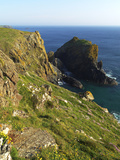 Lion Rock  Kynance Cove  the Lizard  Cornwall  England  United Kingdom  Europe